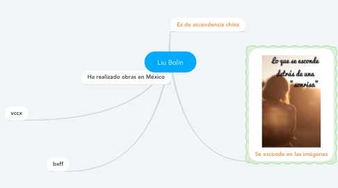 Mind Map: Liu Bolín