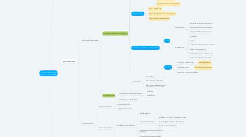 Mind Map: Formas de resolução de conflitos internacionais