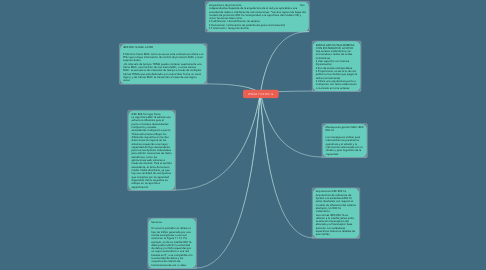 Mind Map: WIMAX Y IEE 802.16