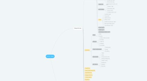 Mind Map: NSE 4 - Teste