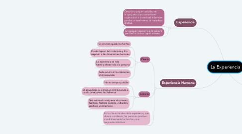 Mind Map: La Experiencia