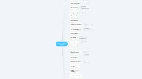 Mind Map: Internship company  portfolio