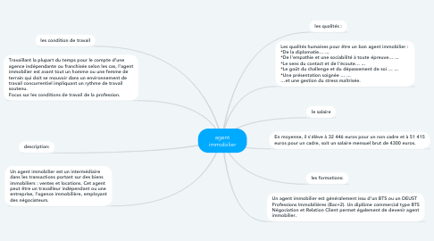 Mind Map: agent immobilier