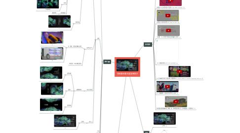Mind Map: 亞洲藝術雙年展宣傳影片
