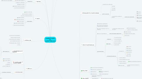 Mind Map: INFORME FINAL DE  INVESTIGACIÓN