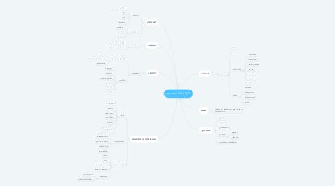 Mind Map: recursos del SAAD