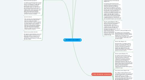 Mind Map: REGIMENES ADUANEROS