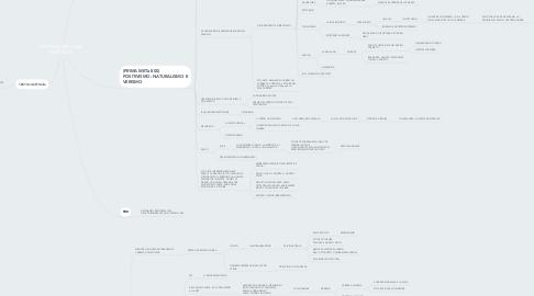 Mind Map: DIVISIONE PER LINEA TEMPORALE