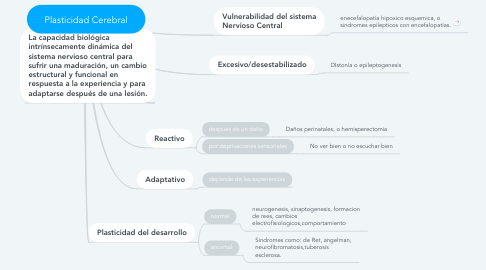 Mind Map: Plasticidad Cerebral