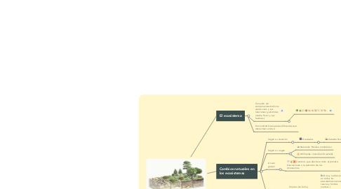 Mind Map: El ecosistema: componentes e interrelaciones: En el tiempo, sucesión.