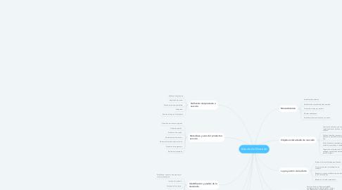 Mind Map: Estudio de Mercado
