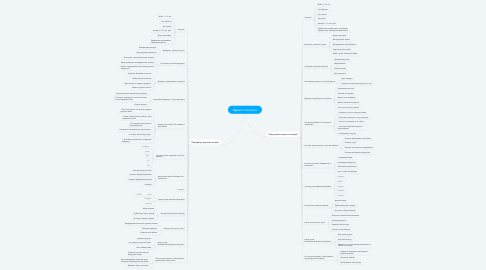 Mind Map: Проект TheRealReal