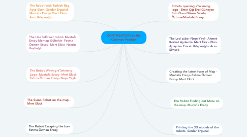 Mind Map: CONTRIBUTORS to the Common Product