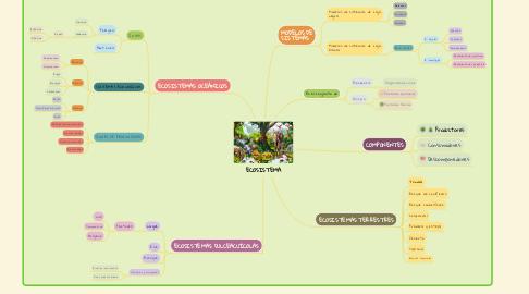 Mind Map: ECOSISTEMA