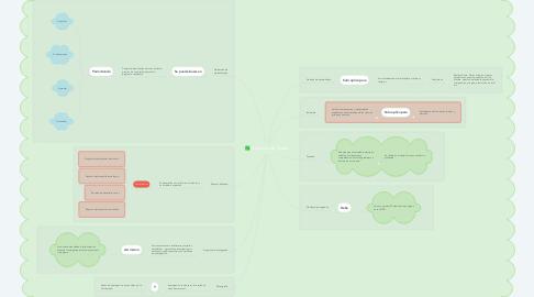 Mind Map: Opciones de Grado