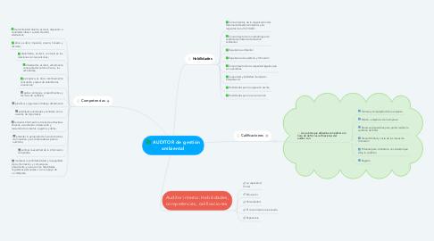 Mind Map: AUDITOR de gestión ambiental