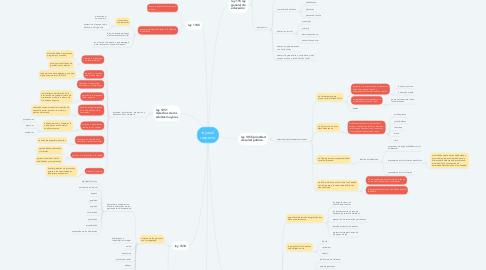 Mind Map: leyes al respecto
