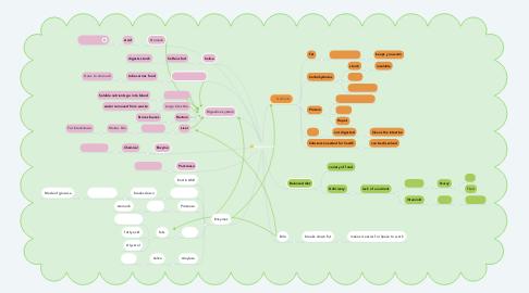 Mind Map: Digestion y8