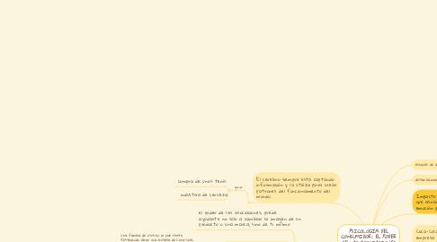 Mind Map: PSICOLOGÍA DEL CONSUMIDOR: EL PODER DE LAS ASOCIACIONES