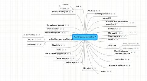 Mind Map: Toimiva opetusohjelma?