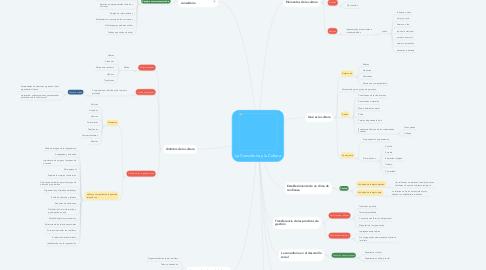 Mind Map: La Consultoría y la Cultura