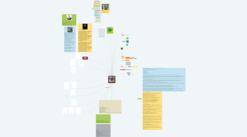 Mind Map: ข้อมูลส่วนตัว