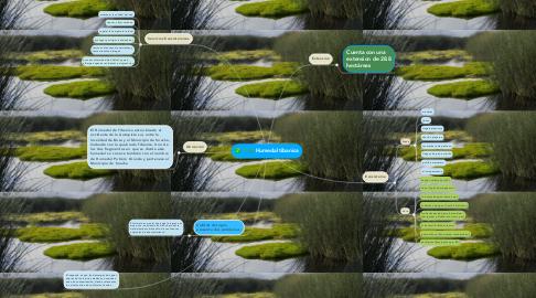 Mind Map: Humedal tibanica