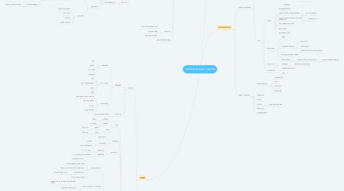 Mind Map: HEMORRAGIA 1 MITAD