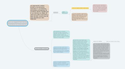 Mind Map: UNIDAD 1 cosas general de las empresas mercantil
