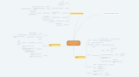Mind Map: Sistema Educativo Mexicano: Tres reformas profundas.