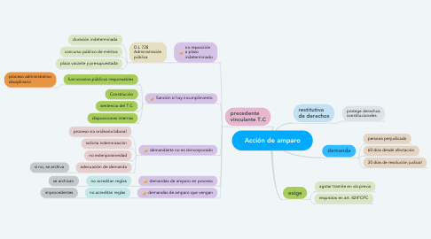 Mind Map: Acción de amparo