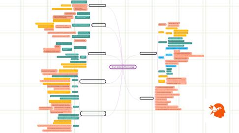 Mind Map: 5_het_kinderrechtenverdrag