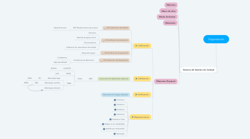 Mind Map: Organización