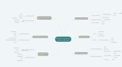 Mind Map: Modificar la estructura y apariencia del texto