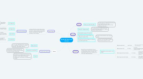 Mind Map: Etapas del desarrollo humano