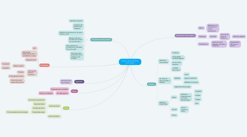 Mind Map: Mashua negra deshidrata para infusión