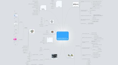 Mind Map: ESCENARIOS FORMATIVOS Y DOCENCIA BASADOS EN TIC