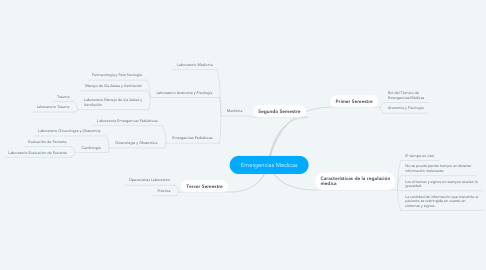 Mind Map: Emergencias Medicas