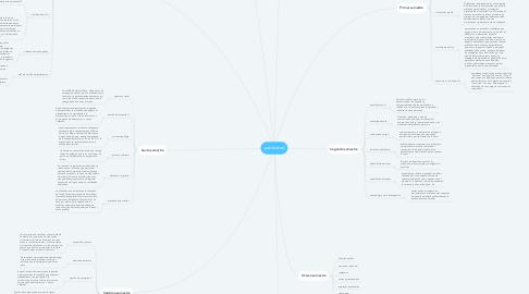 Mind Map: publicidad