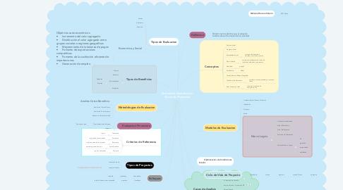 Mind Map: Evaluación Económica y Social de Proyectos