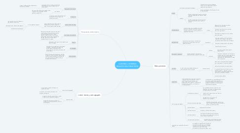 Mind Map: CONTROL INTERNO BASADO EN PRINCIPIOS