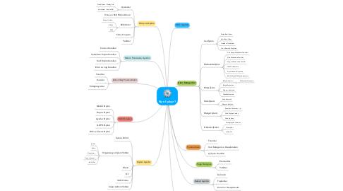 Mind Map: Nasıl çalışır?