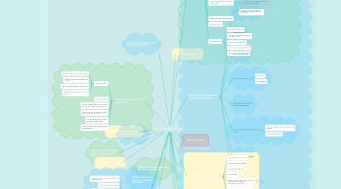 Mind Map: Mapa Conceptual DSM V
