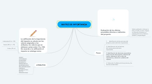 Mind Map: MATRIZ DE IMPORTANCIA