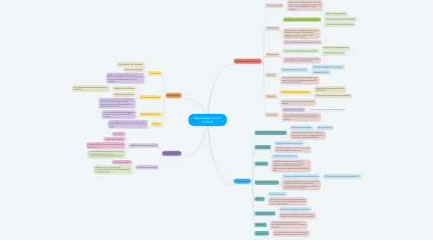 Mind Map: Metodología General Ajustada