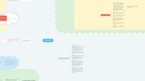 Mind Map: contrainsurgencia