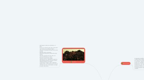 Mind Map: Como hacer Humus de lombriz