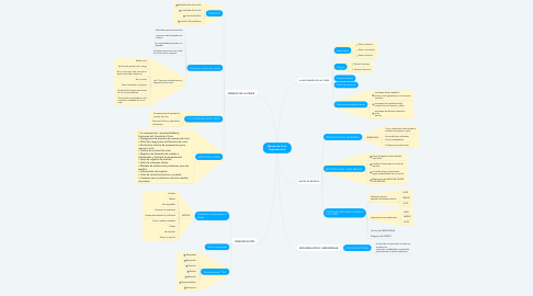 Mind Map: Manejo de Crisis Organizaciónal