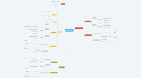 Mind Map: MWS BUSINESS
