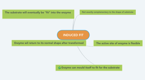 Mind Map: INDUCED FIT